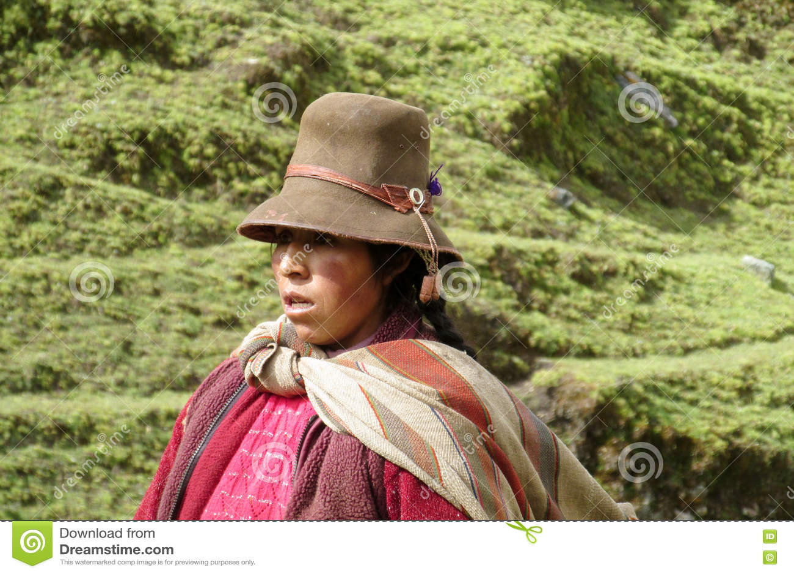 Mujer En Sombrero Boliviano Tradicional Foto de archivo editorial ... f0d183d323c