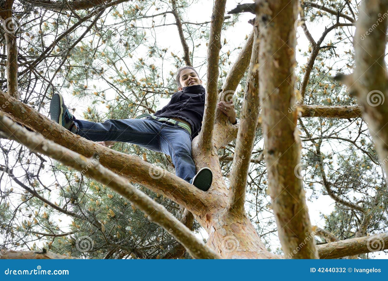 Mujer joven hermosa que mira abajo de un árbol alto
