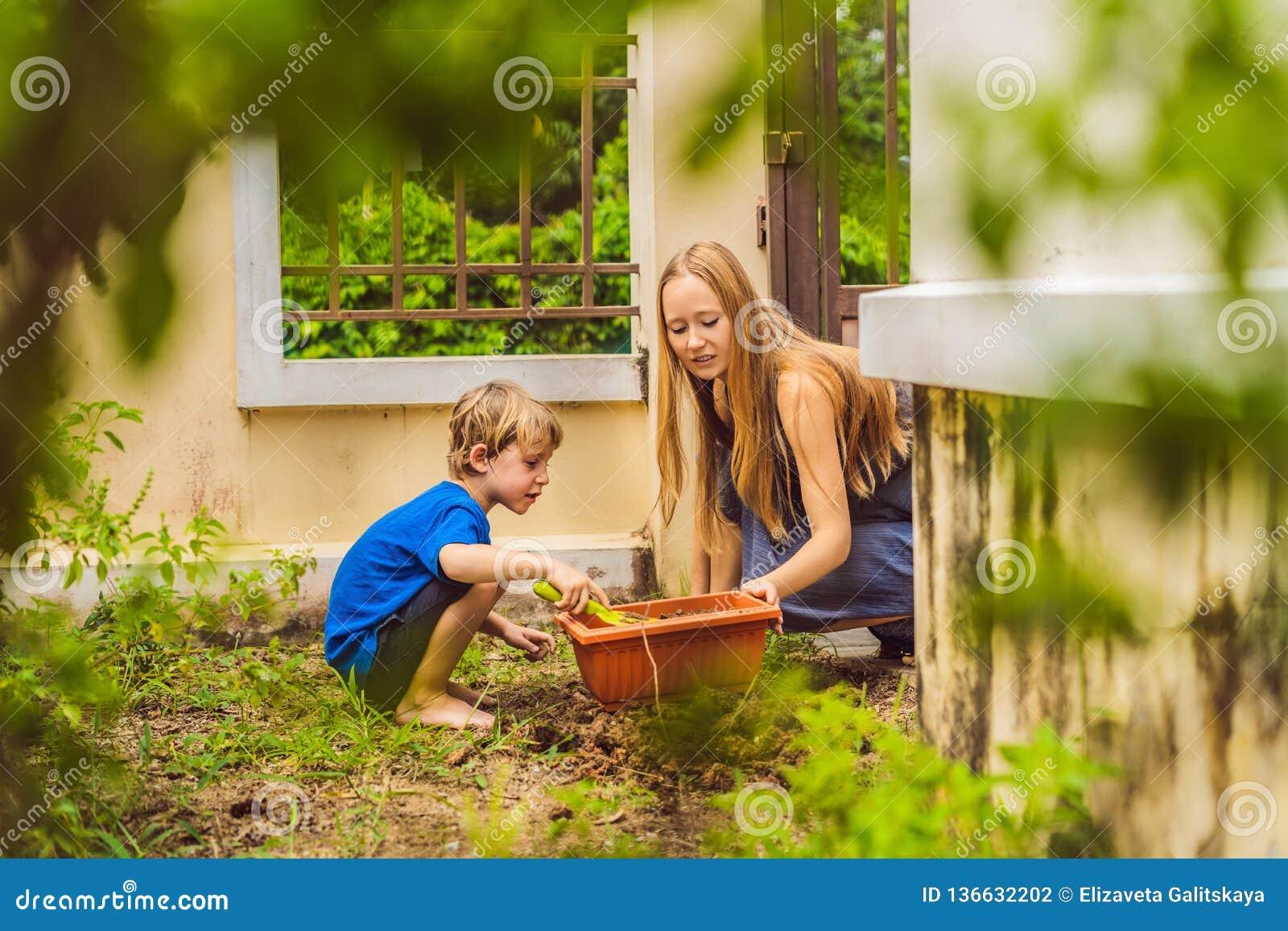 Mujer joven hermosa y su hijo lindo que plantan almácigos en cama en el jardín nacional en el día de verano Herramientas de jardí