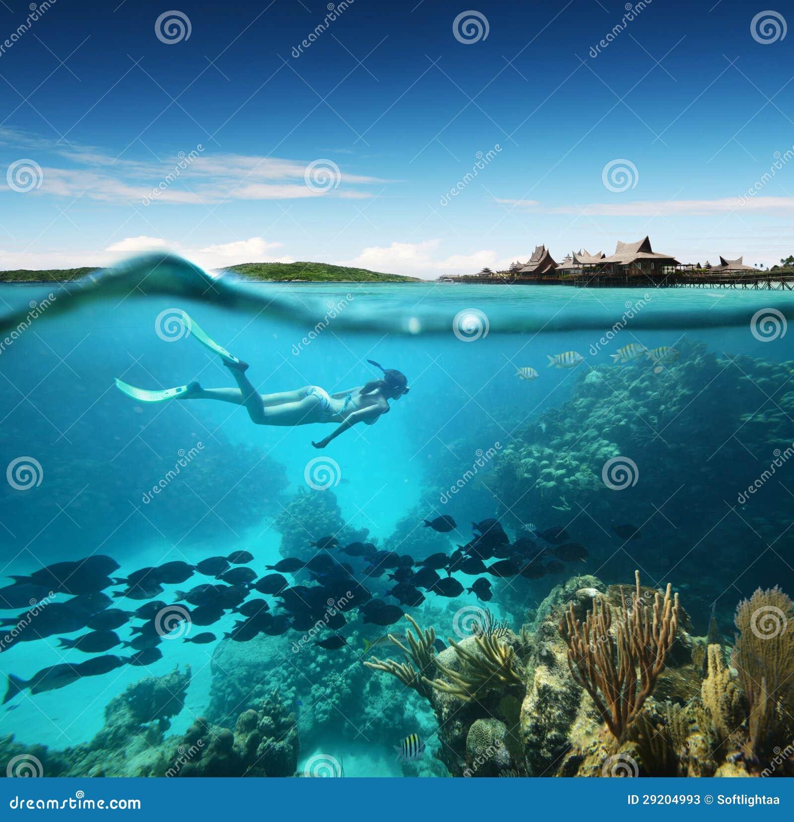 Mujer joven que bucea en el arrecife de coral en el mar tropical