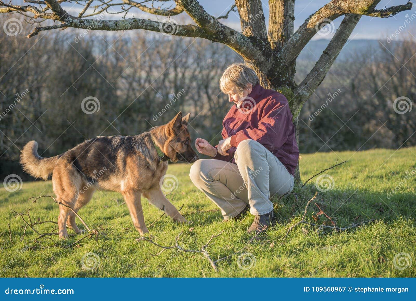 Mujer Madura Que Juega Con Su Perro Del Alsatian Del Animal ...