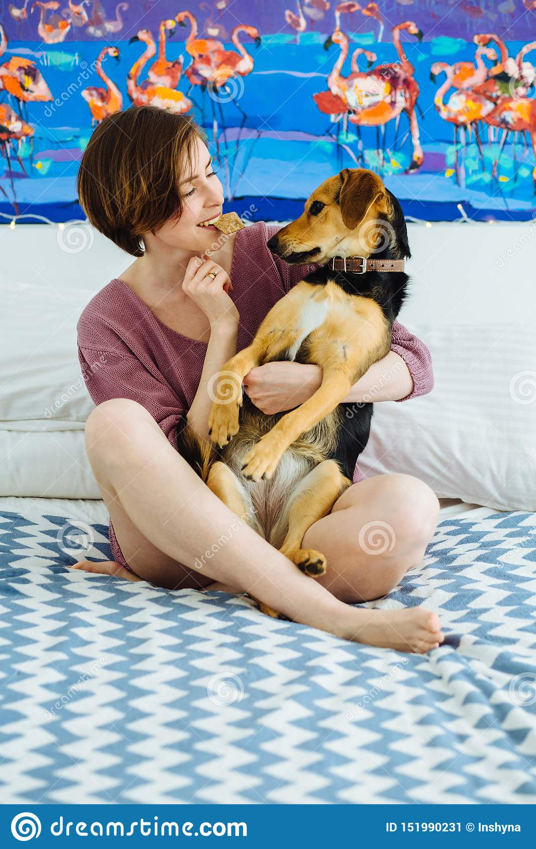 Mujer positiva joven que juega con el perro casero en casa interior Galleta que se sostiene femenina divertida en boca y el abraz