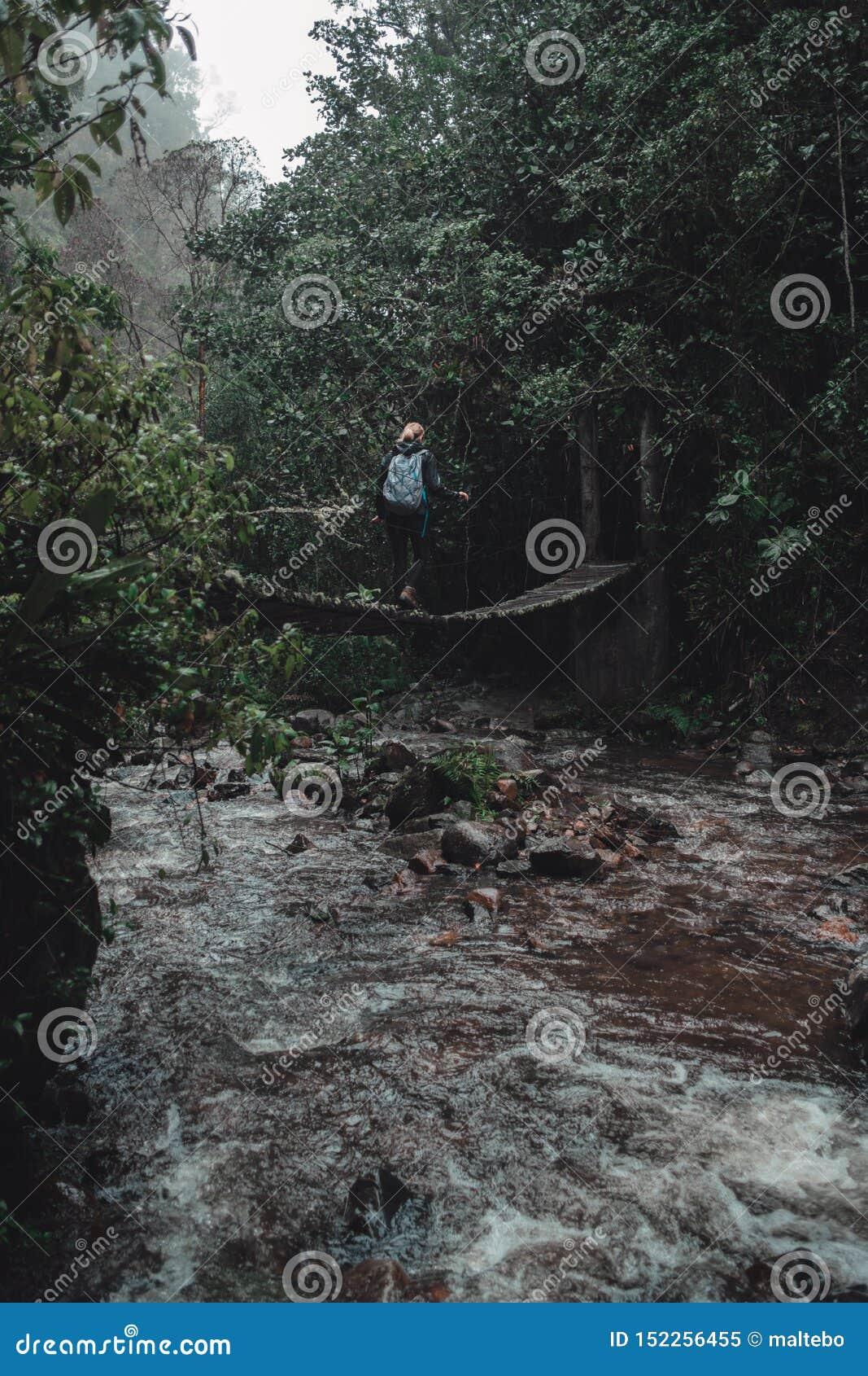 Mujer que camina sobre un puente en la selva tropical