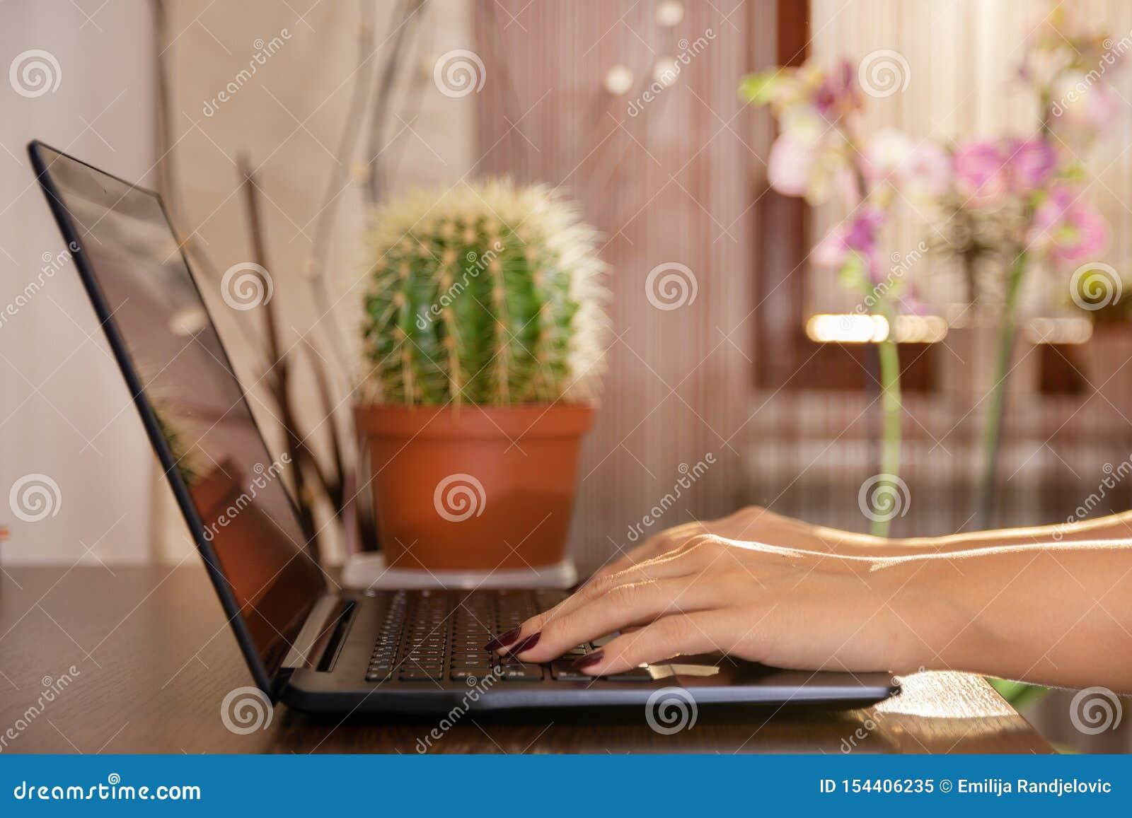 Mujer que trabaja en casa la mano de la oficina en el ordenador port?til