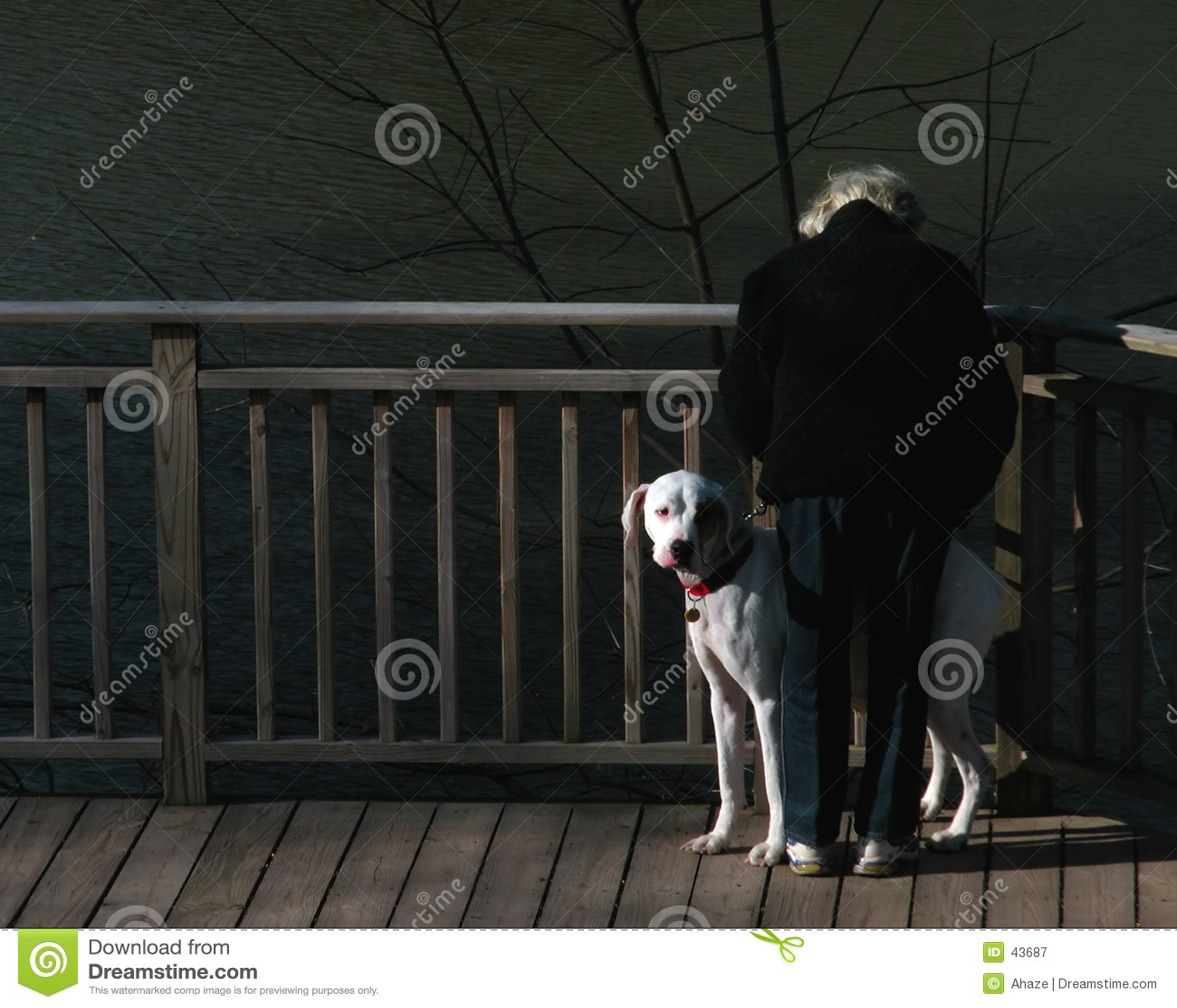 Mujer y perro