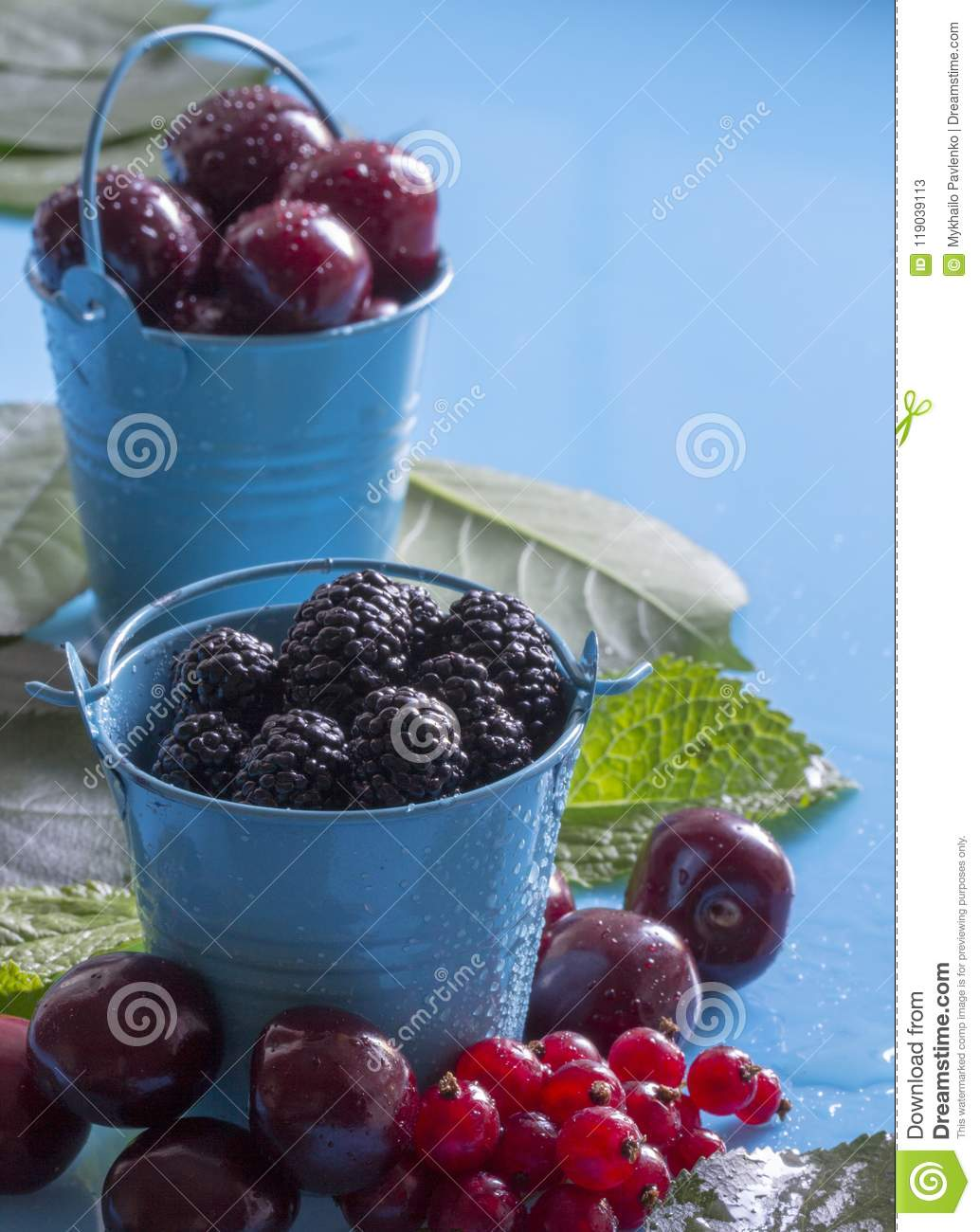 efad375c4d69 A Mulberry And Other Berries In A Blue Bucket