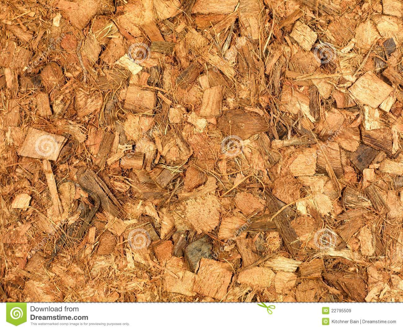 Dirty Wood Chips ~ Mulch royalty free stock images image