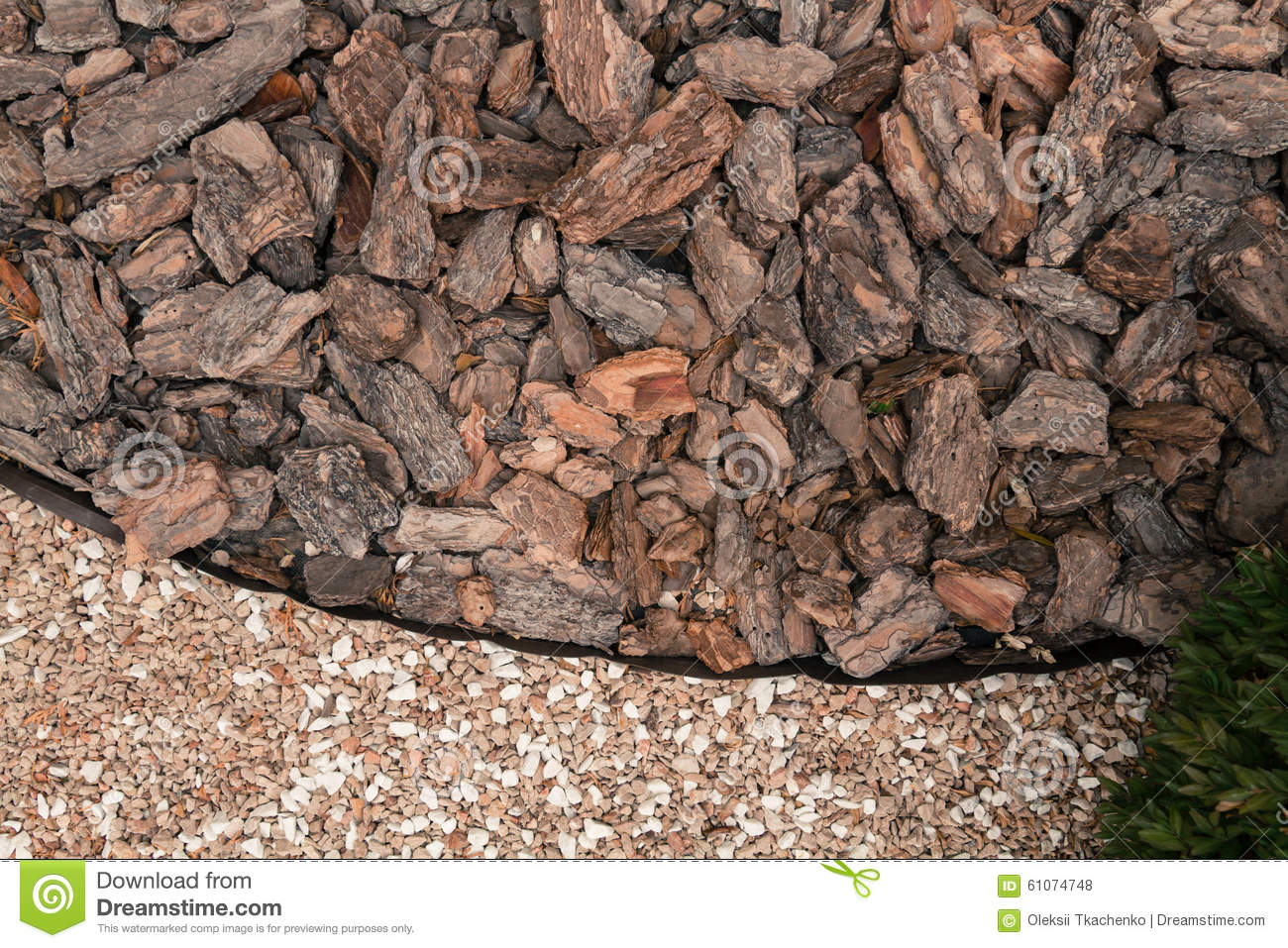 Mulch From The Bark Of Pine Trees Stock Photo - Image of garden ...