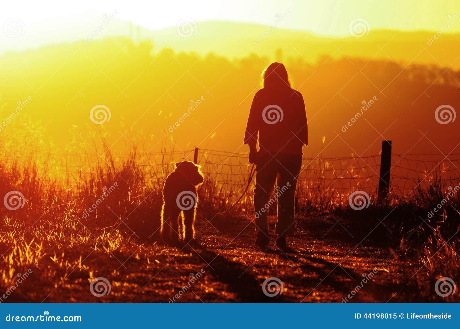 A mulher aprecia o tempo para fora & a paz que anda seu cão do melhor amigo