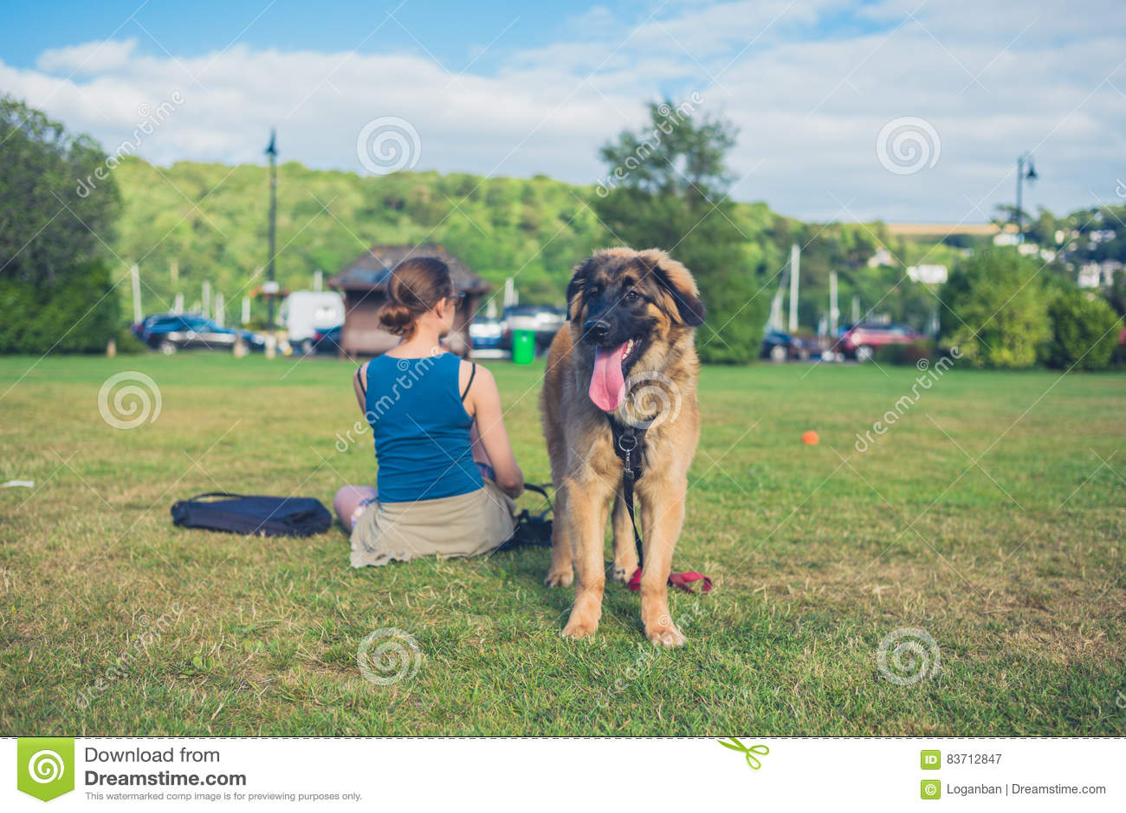 Mulher com o cão grande no parque