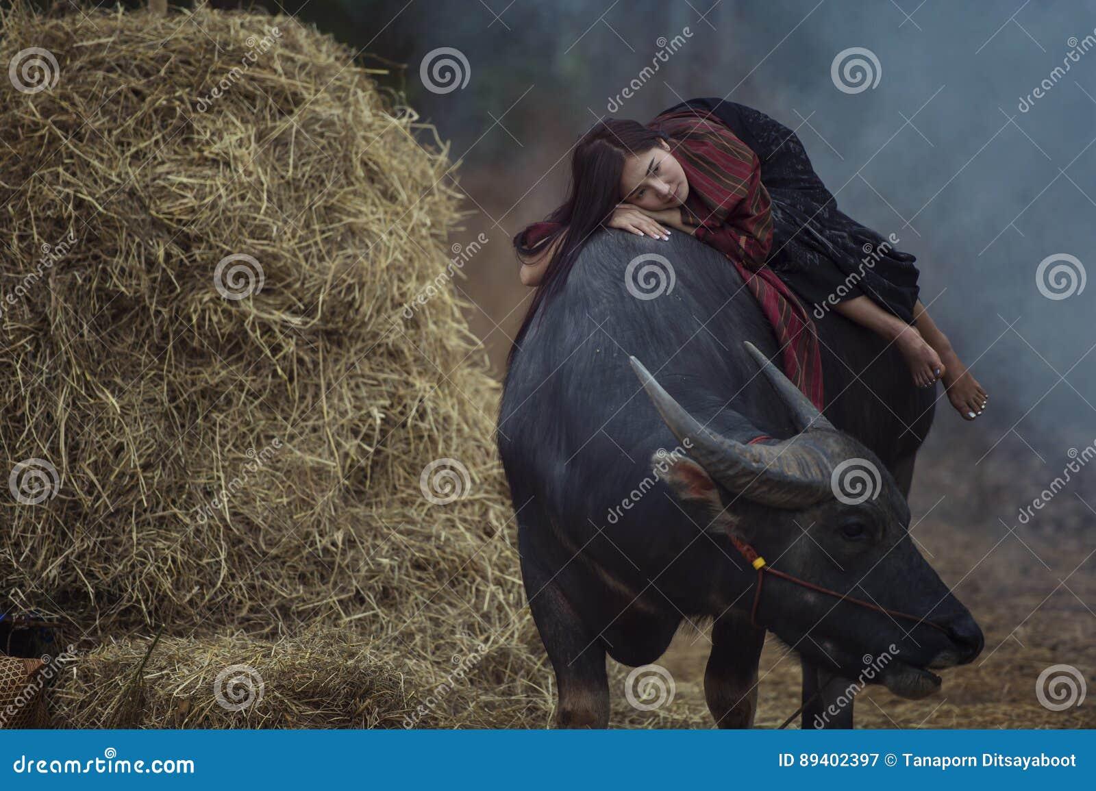 Mulher do fazendeiro que encontra-se em seu búfalo