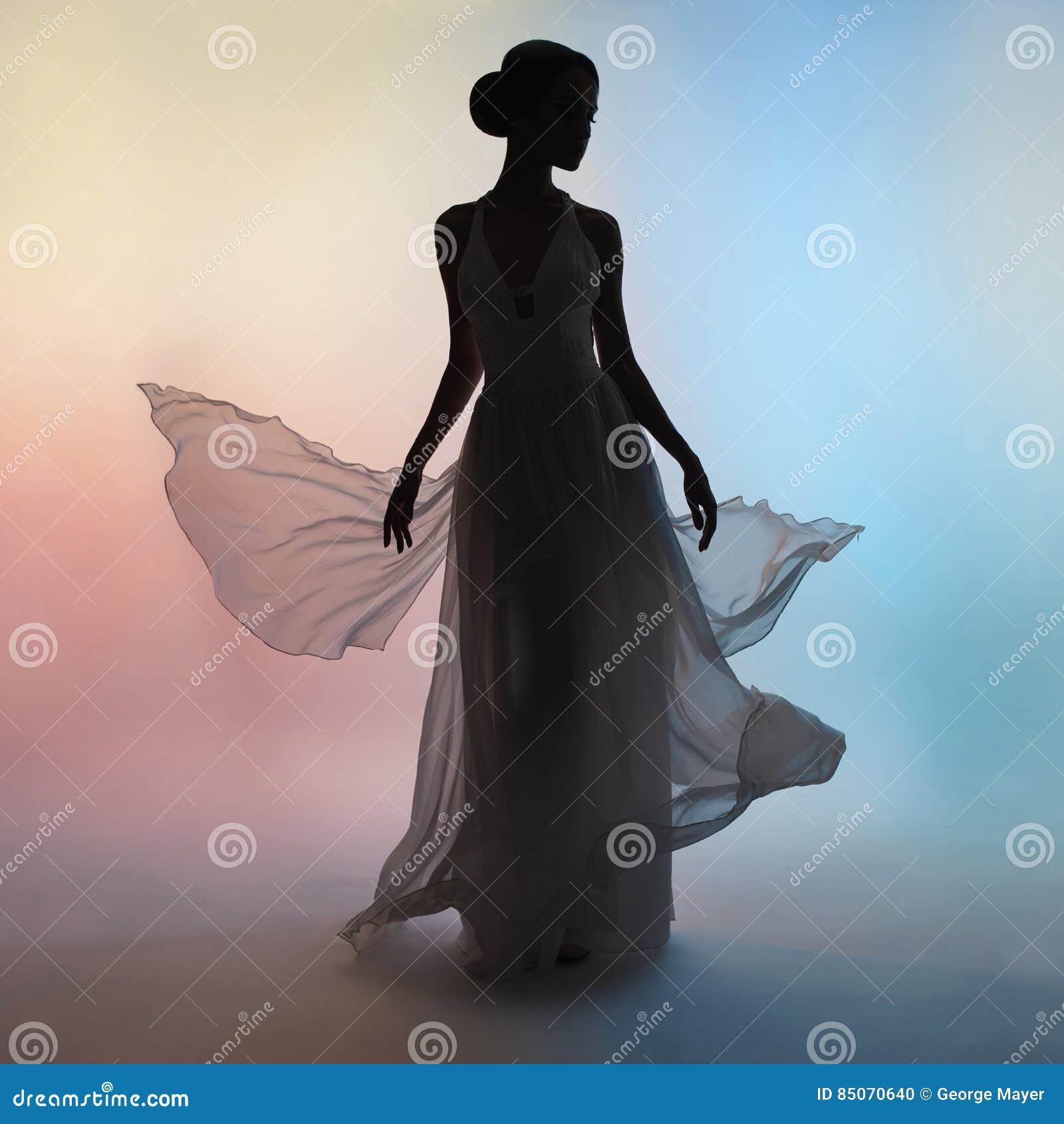 Mulher elegante da silhueta no vestido de sopro