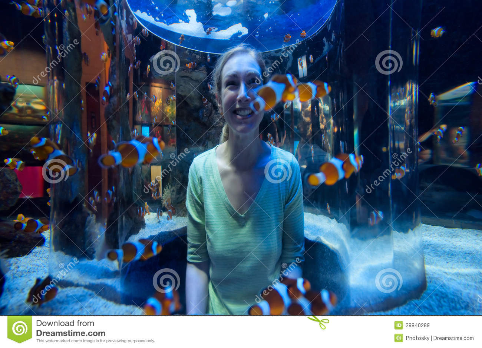 A mulher feliz olha peixes do palhaço através do vidro