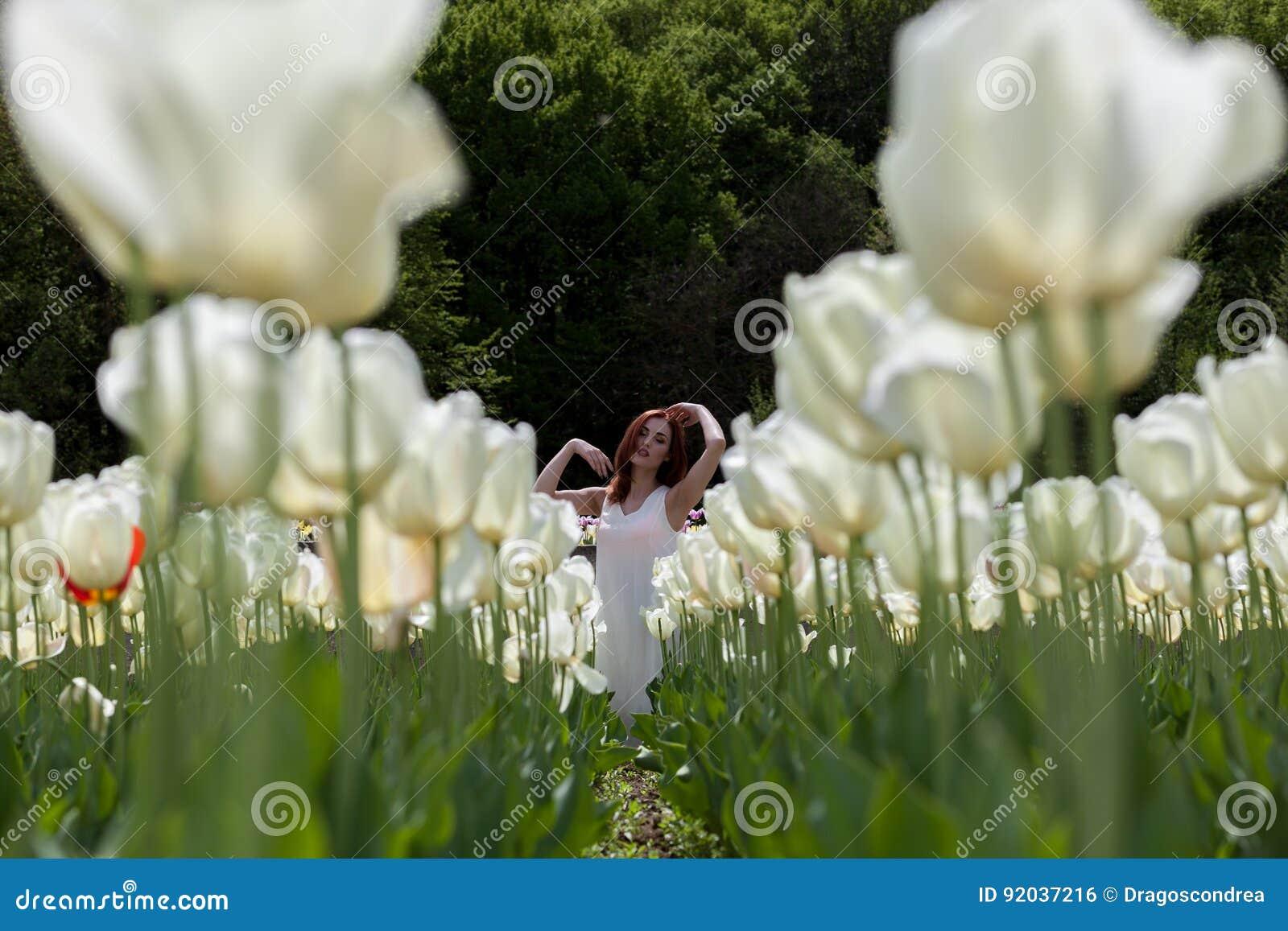 Mulher Lindo Romântica No Campo De Flor Foto De Stock