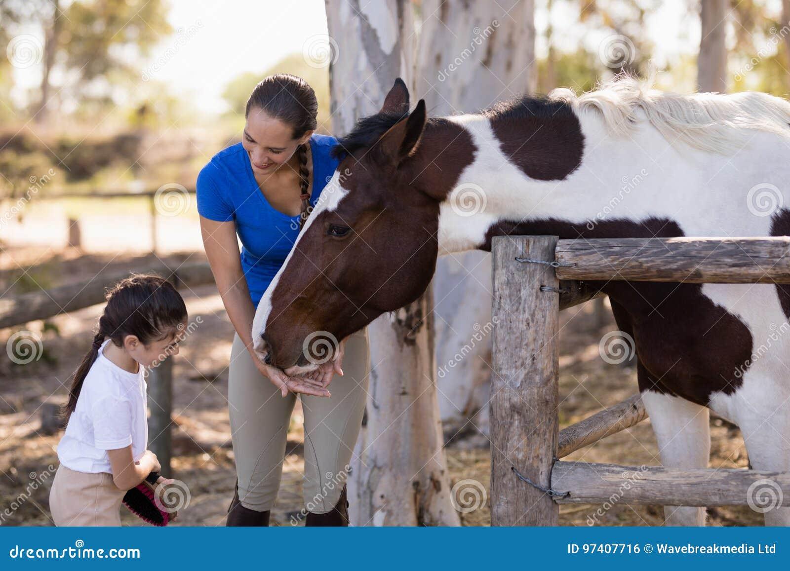 Mulher que ajuda à irmã para o cavalo de limpeza