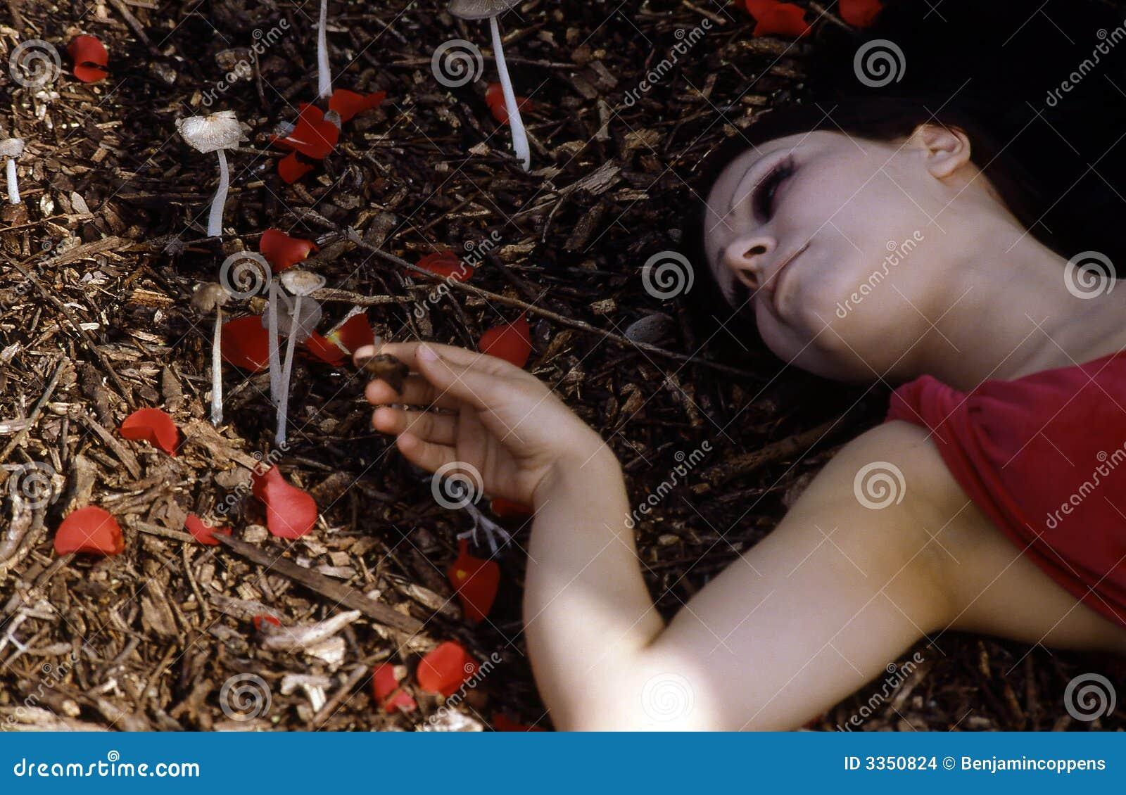 Mulher que coloca na floresta