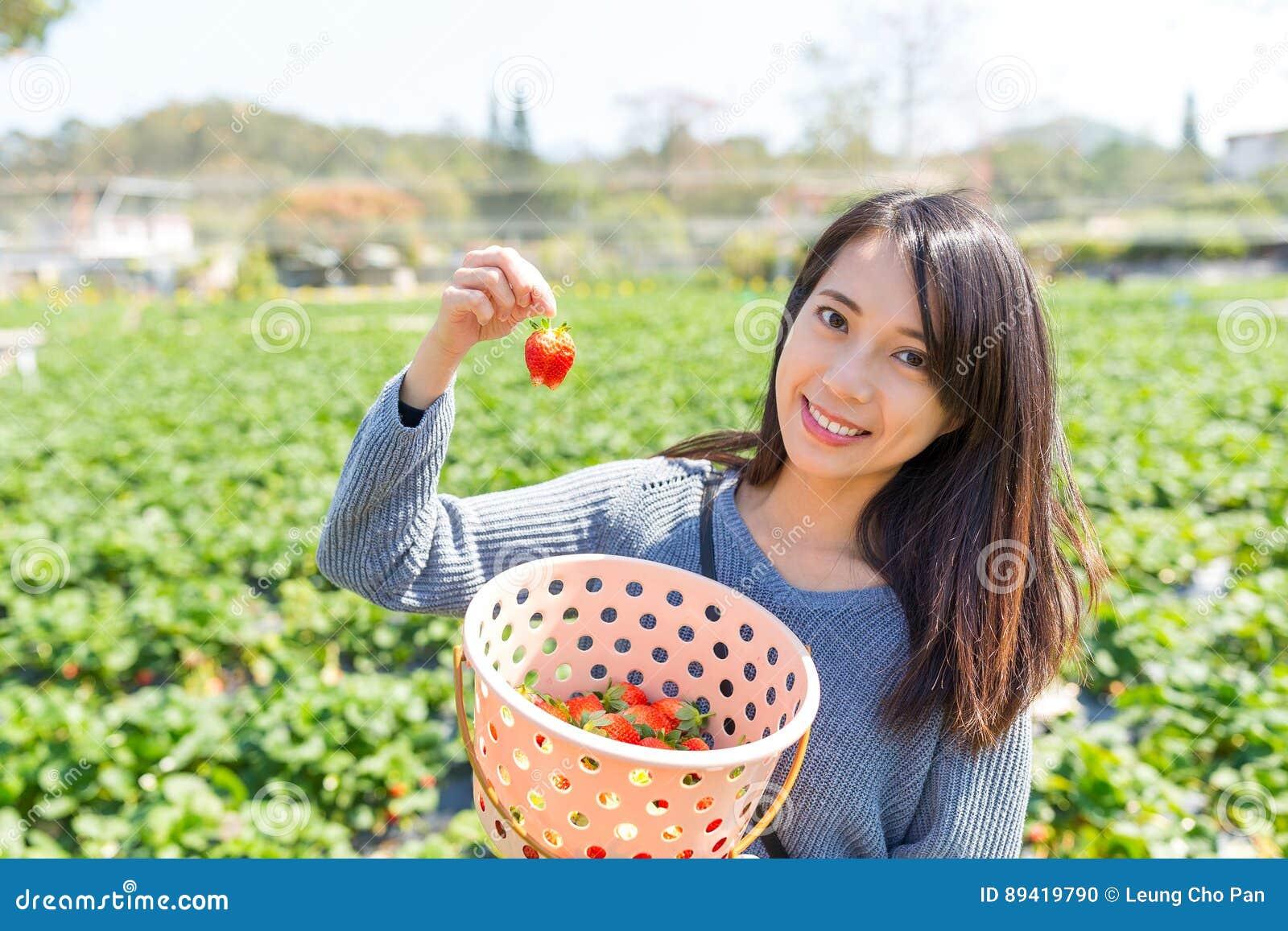 Mulher que guarda a morango no campo