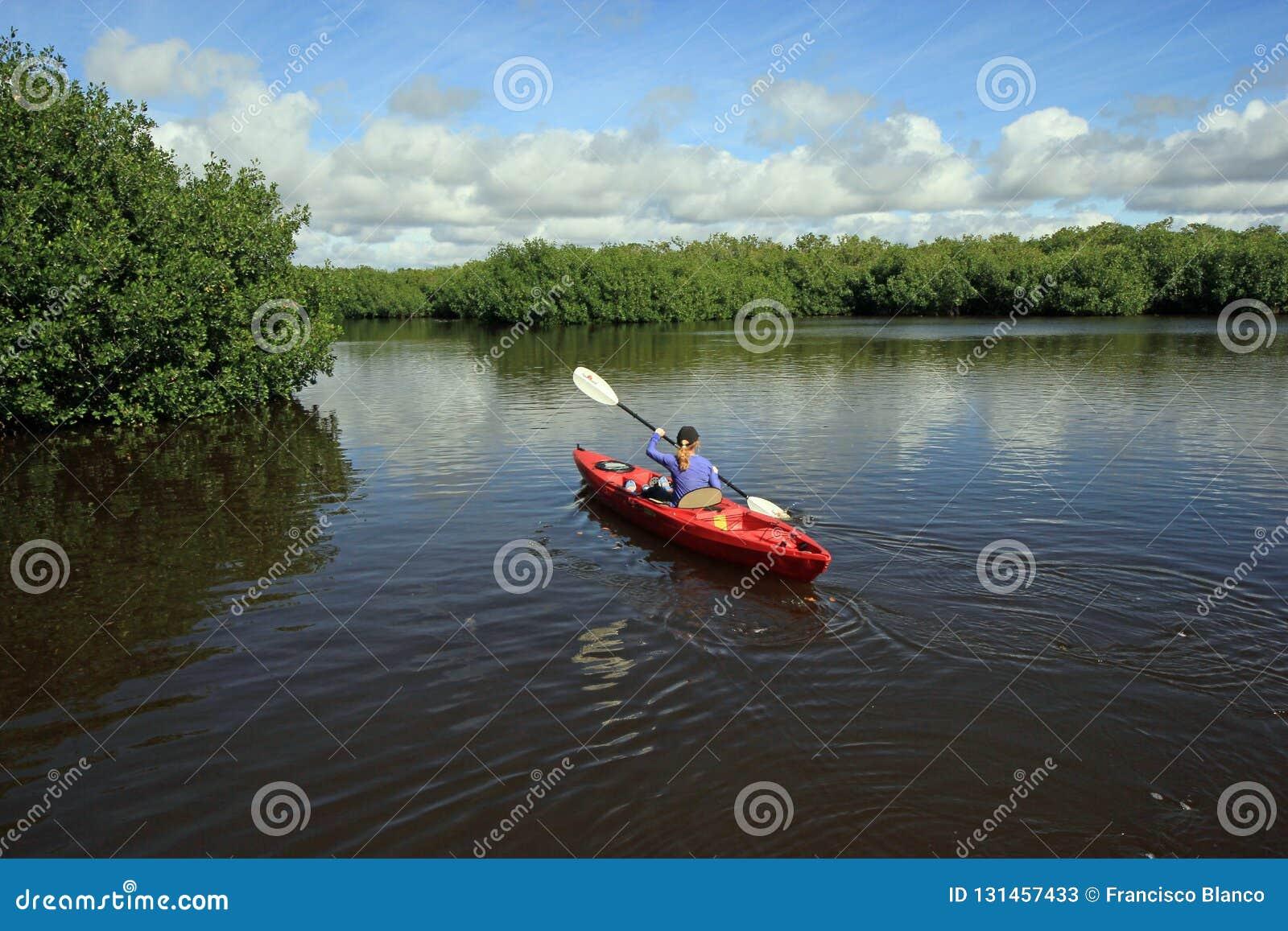 Mulher que kayaking nos marismas parque nacional, Florida