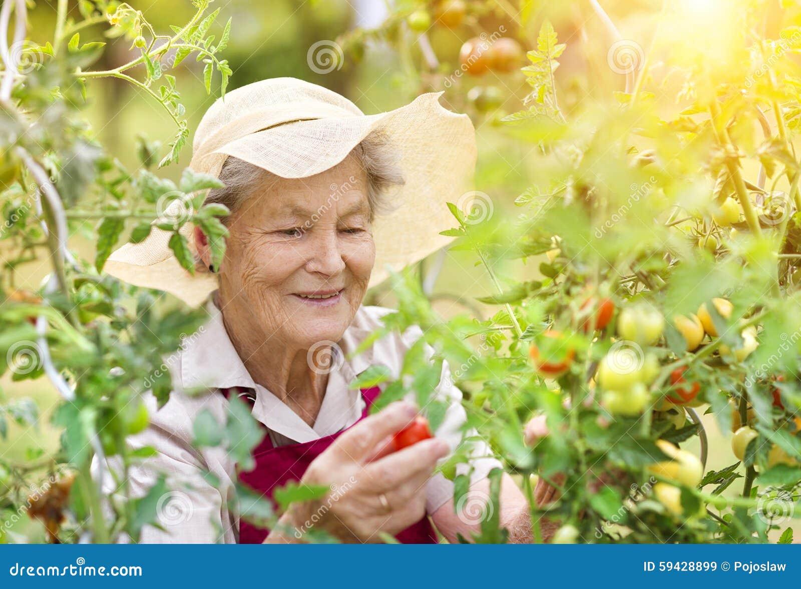 Mulher superior em seu jardim