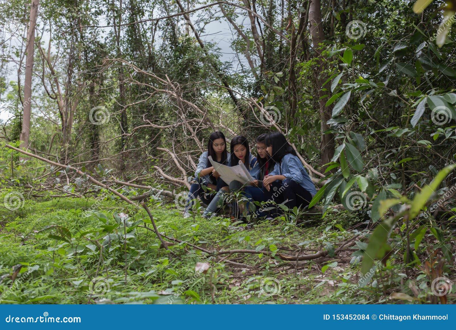 Mulheres do grupo de jovens mulheres amigáveis na natureza