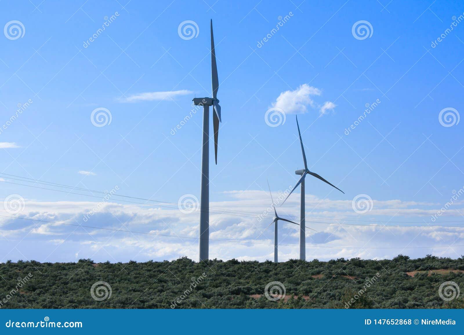 Mulini a vento che raggiungono verso il cielo