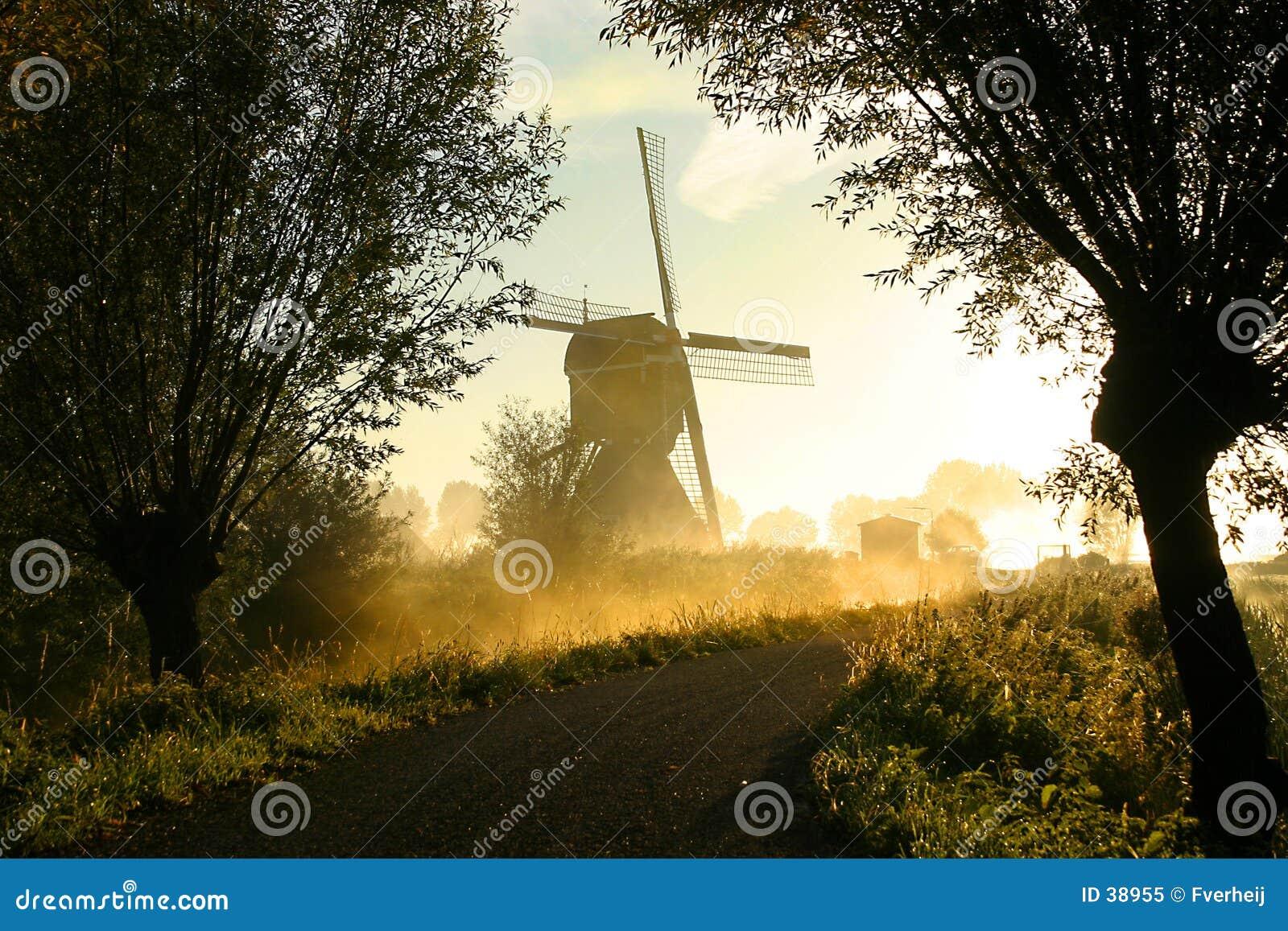 Mulino a vento in nebbia