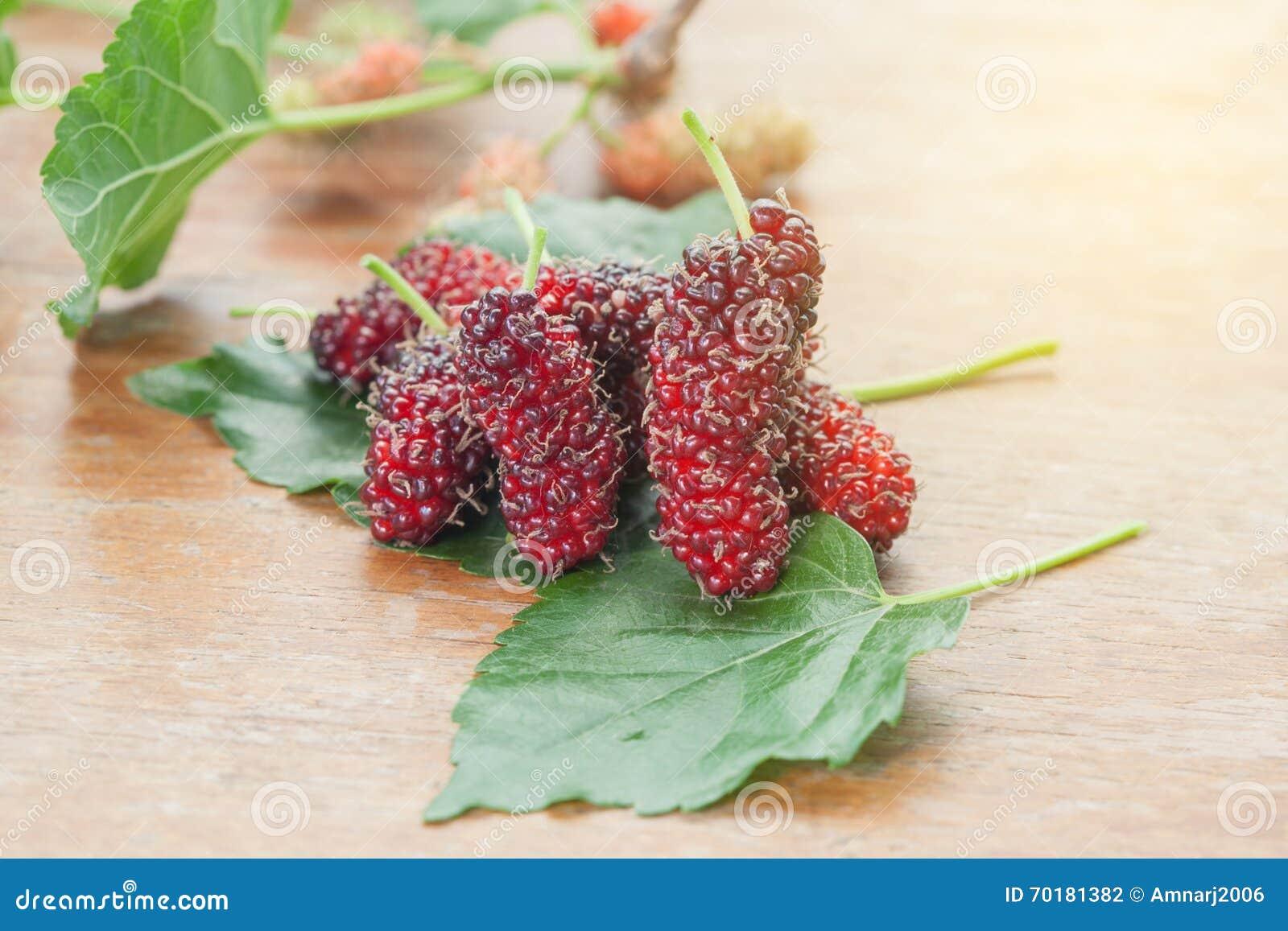 Mullbärsträdfrukt på träbakgrund