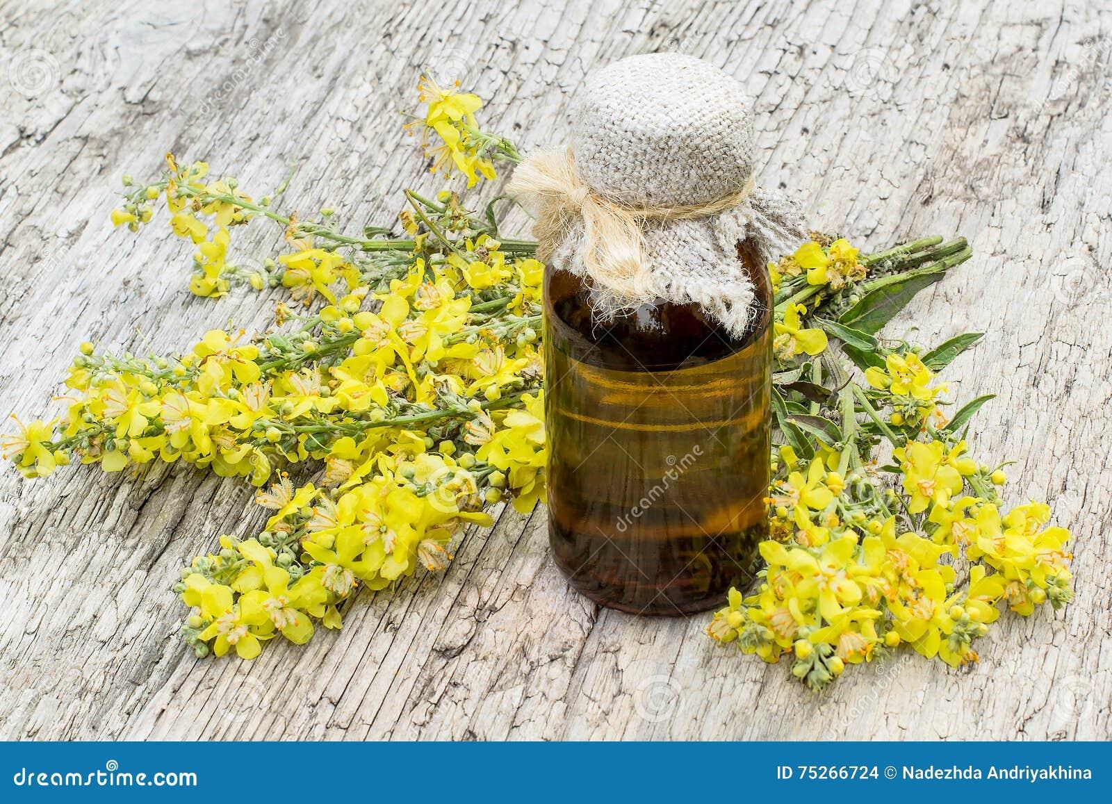 Mullein (Verbascum) и фармацевтическая бутылка