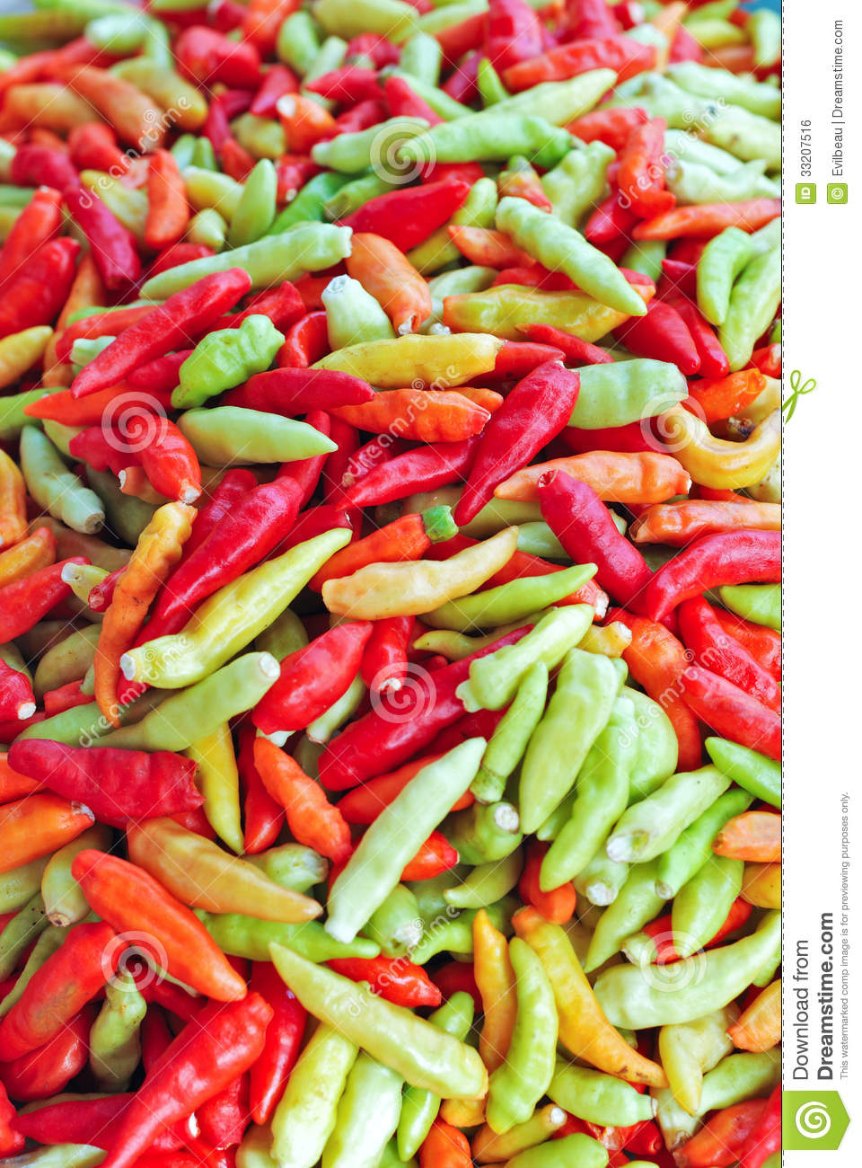 how to cook fresh chillies
