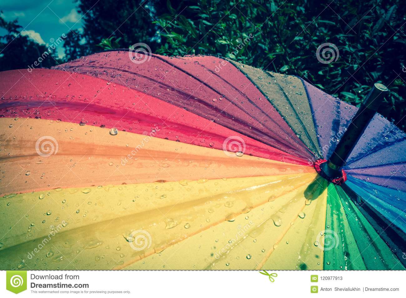 multi colored colorful umbrella with all colors of the rainbow with