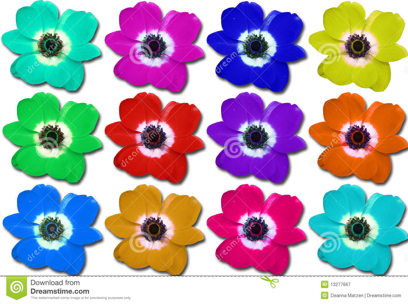 Multi colored flower collage stock image image 13277667 for How to make multi colored flowers