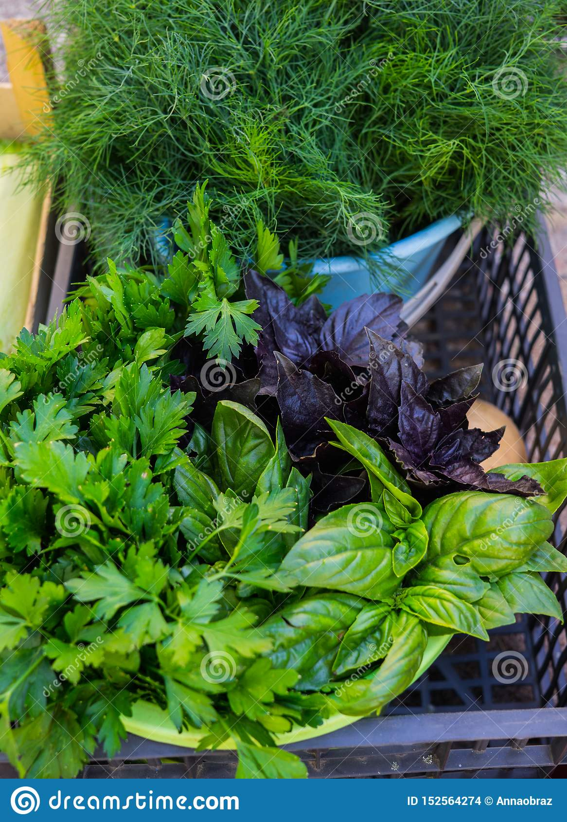 Multicolored basil, parsley and dill in a box at the farmers market