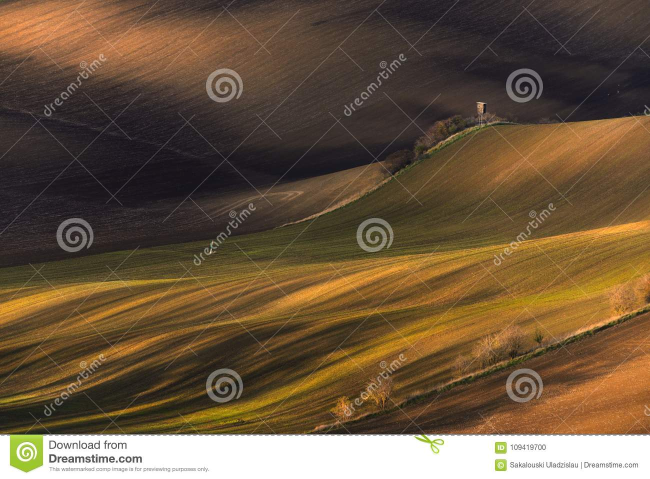 Multicolored Rural Spring /Autumn Landscape.Waved Cultivated Row Field With Hunting Tower In Springtime. Rustic Autumn Landscape