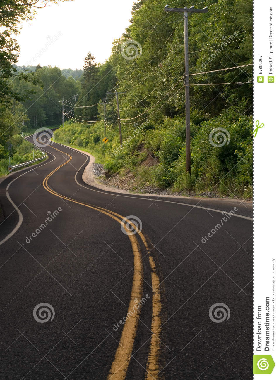 multiple curves in a road through the forest stock image image of