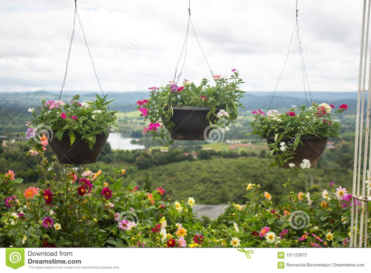 Multiple Hanging Bastets With Flowers Outside Of House