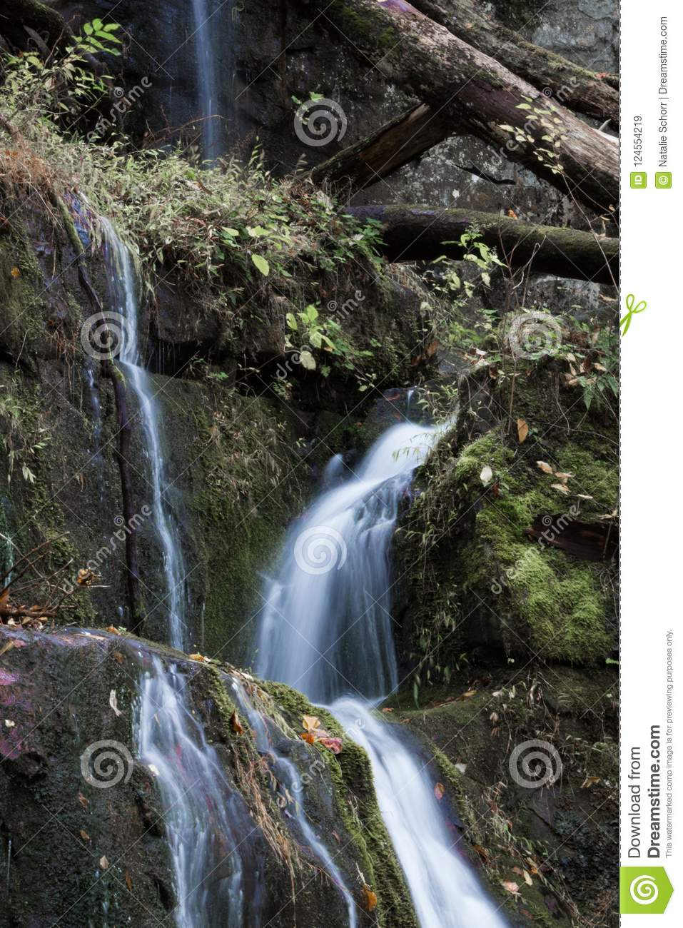 Multiple Streams Of Water Cascading Over Moss Covered Rocks