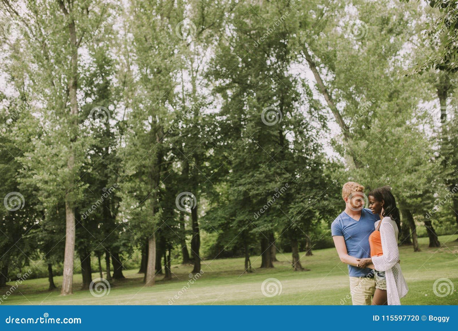 Multiraciaal koppel in het park
