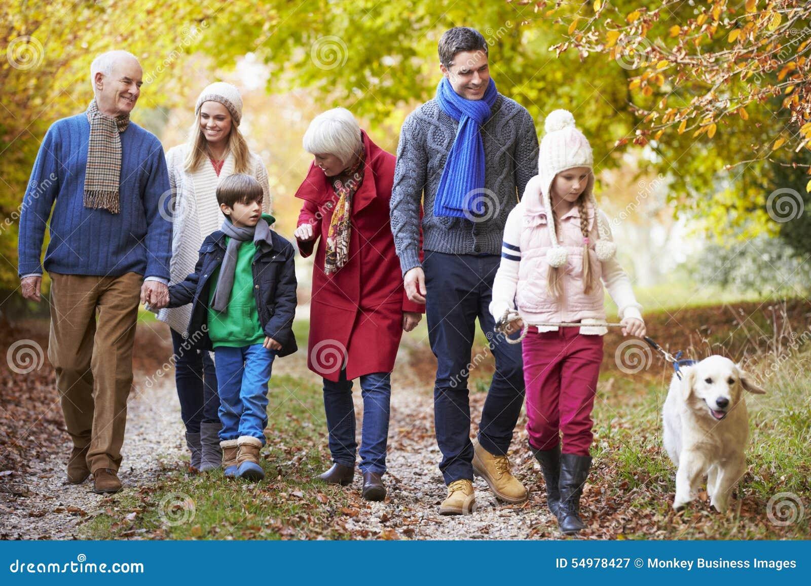 Multl utvecklingsfamilj som promenerar Autumn Path With Dog