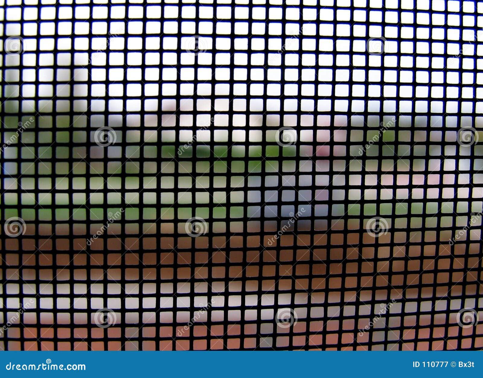 Mundo através da rede de mosquito no.1