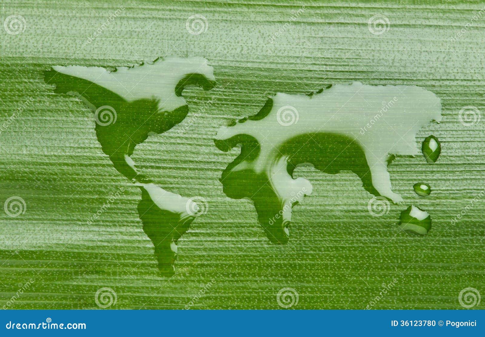 Mundo verde da água