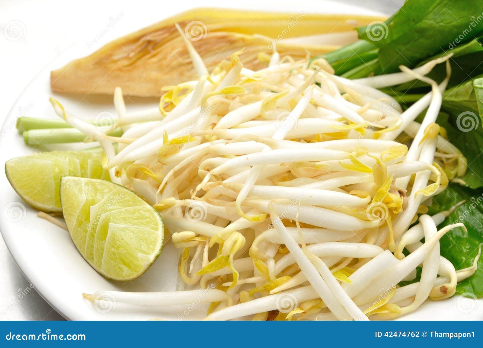 Mungobohnen oder Sojabohnensprossen auf weißen Platten