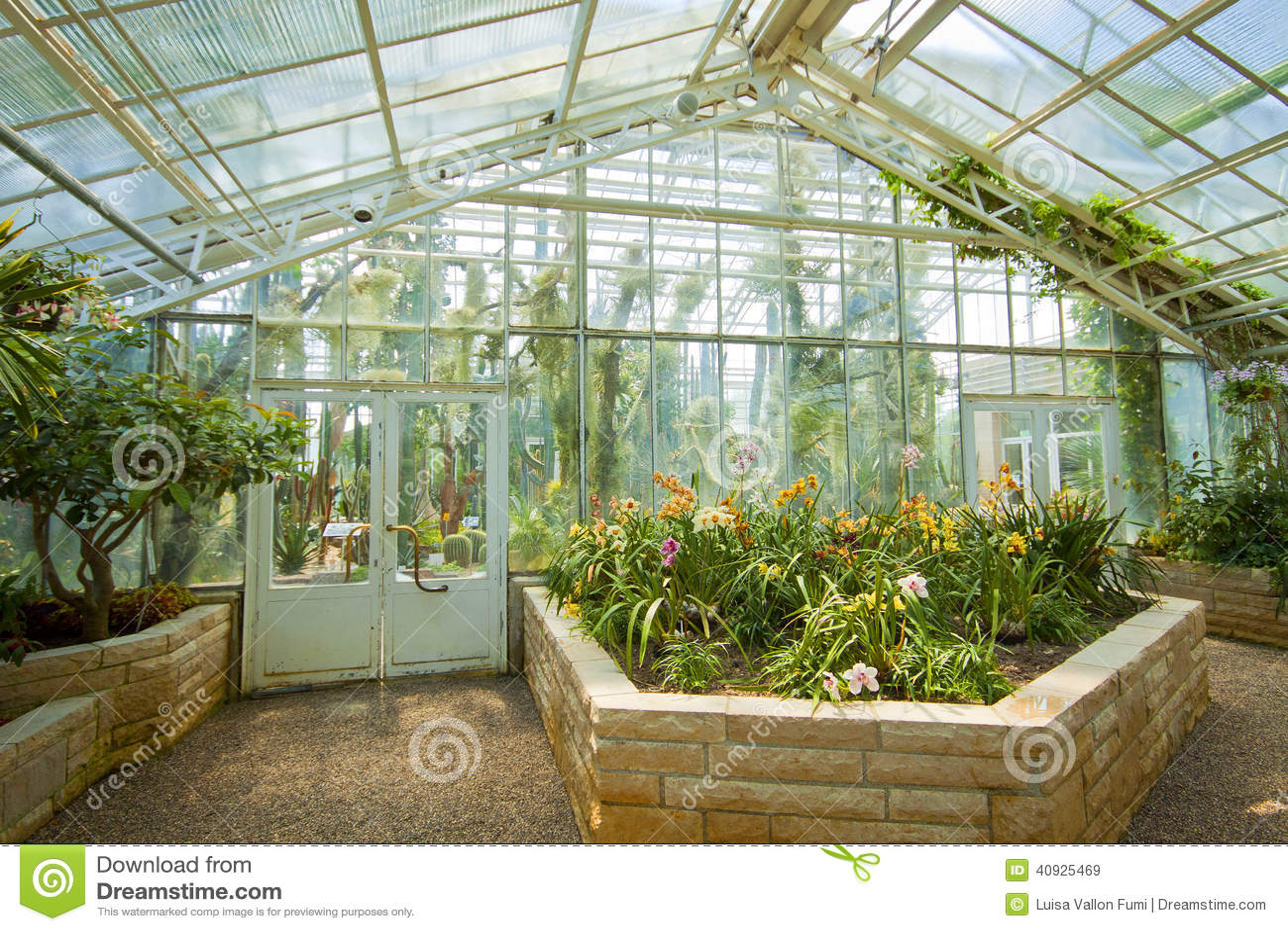 Munich, Serre Chaude D\'orchidées De Jardin Botanique Image ...