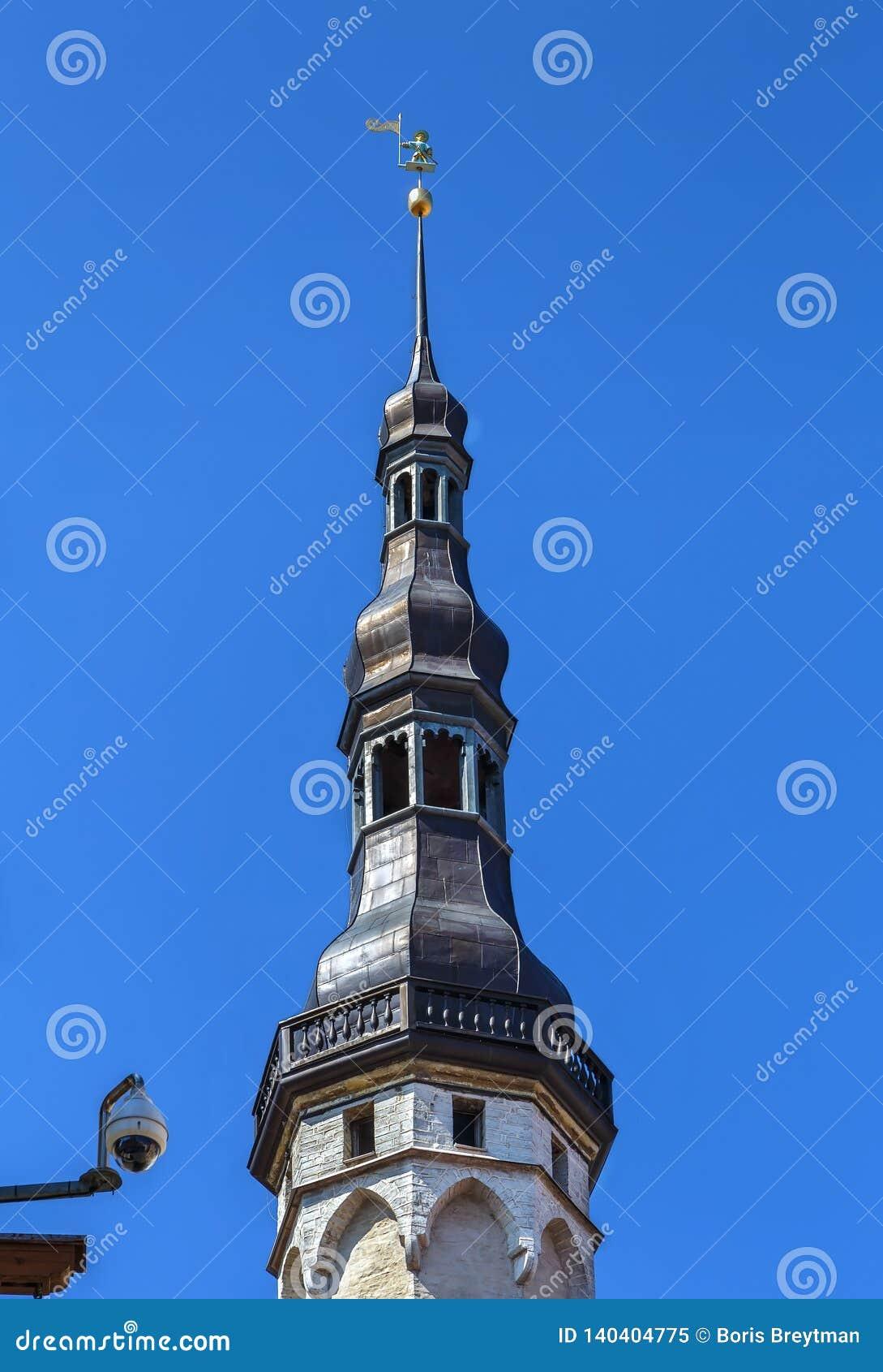 Municipio, Estonia di Tallinn