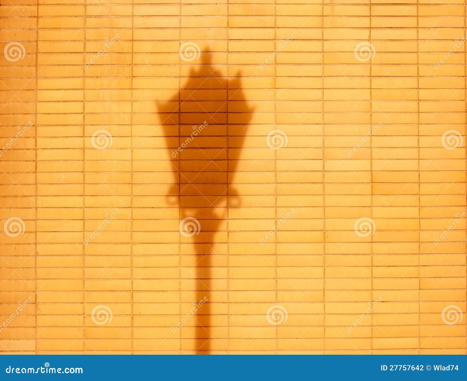 Mur de briques et ombre de baisse de réverbère