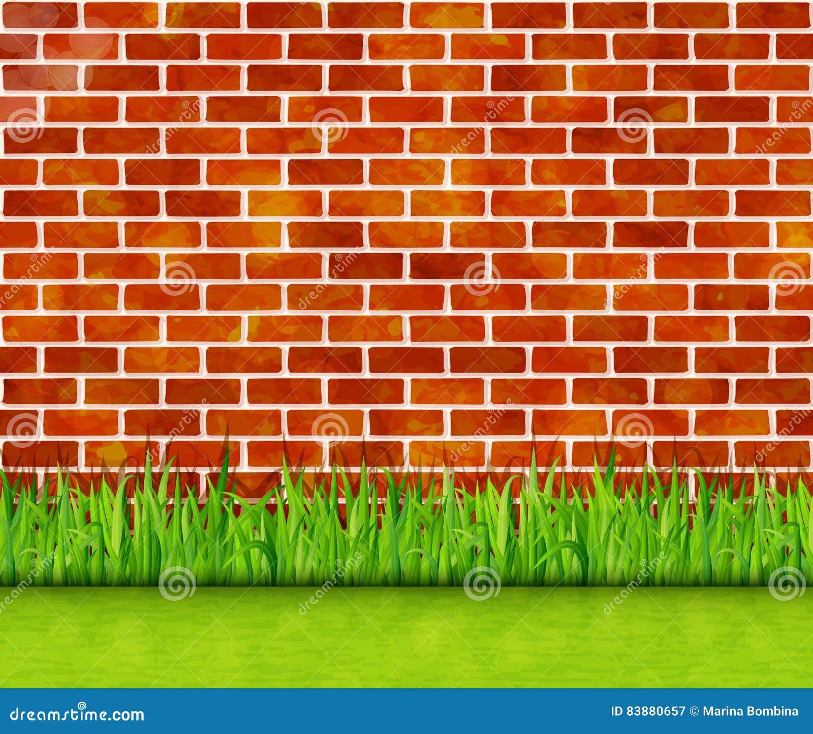 Mur de briques rouge avec le fond de vecteur d herbe verte