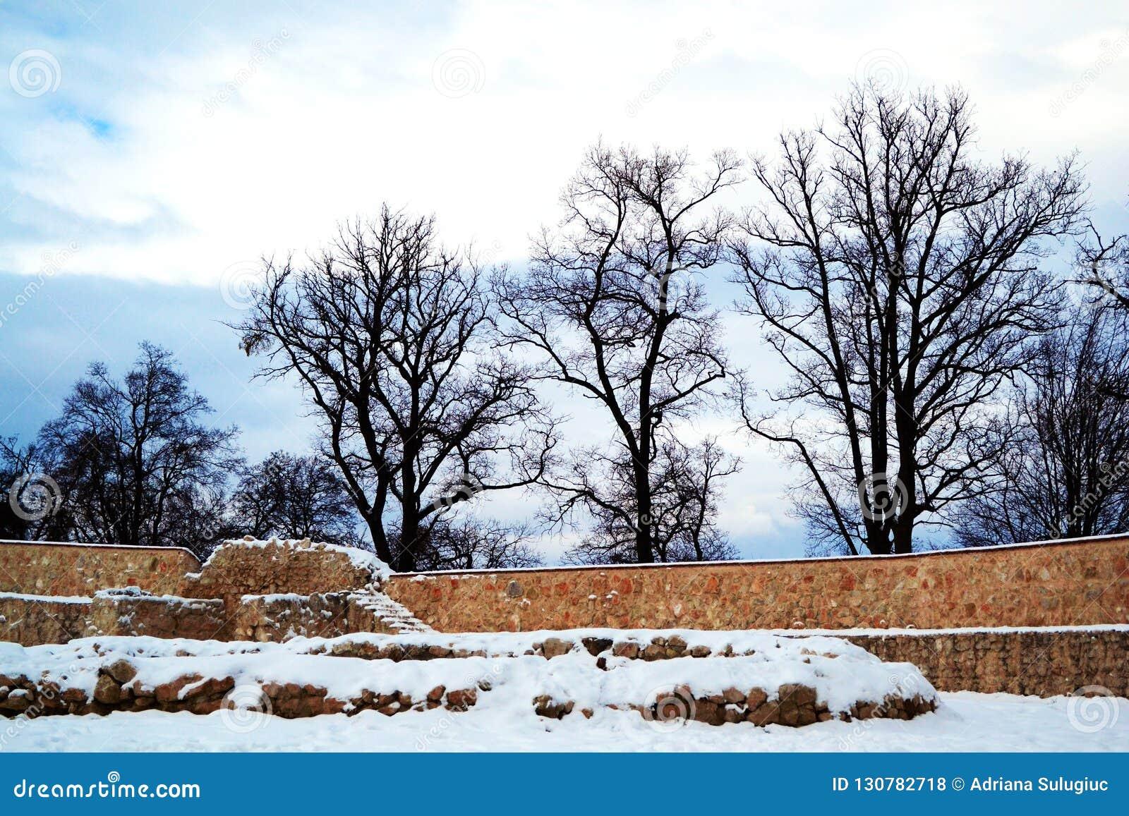 Mur de forteresse de Rasnov