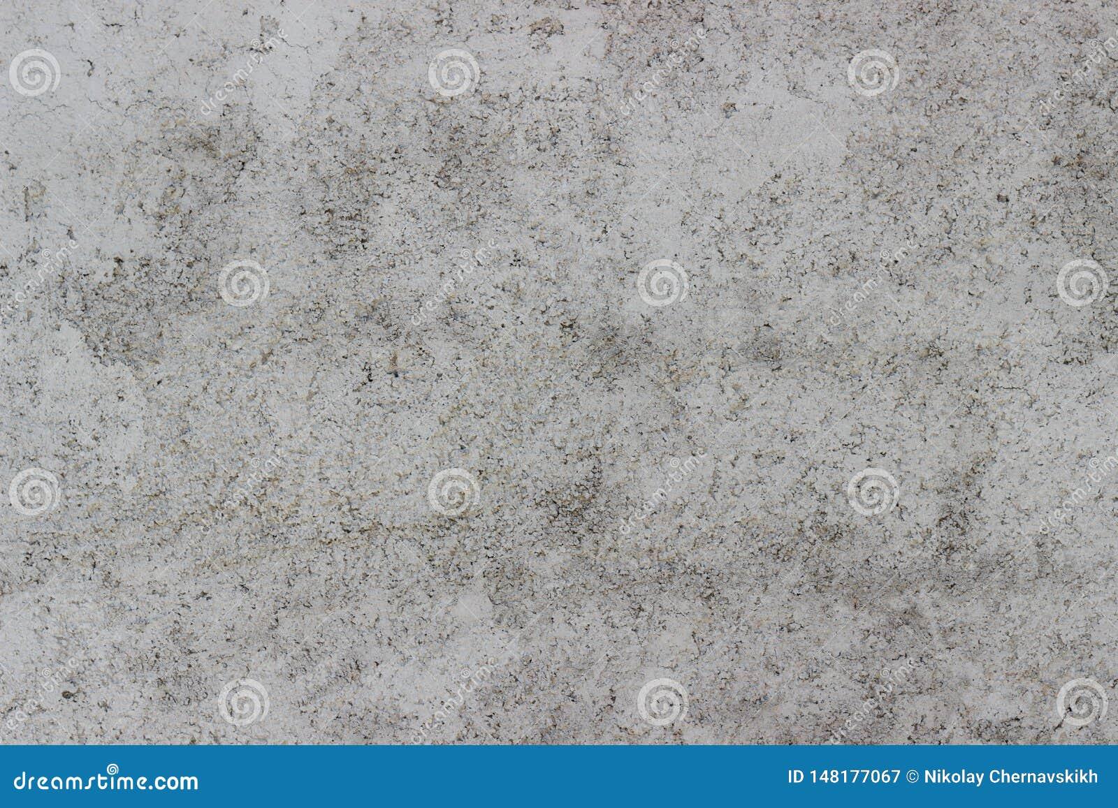 Mur en bois de petite de puce de contreplaqué texture blanche frontale de panneau