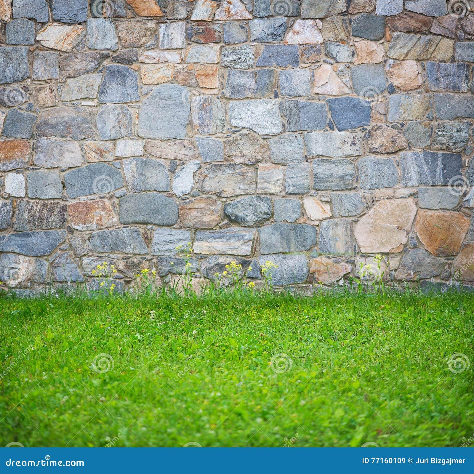 Mur en pierre et herbe de fond