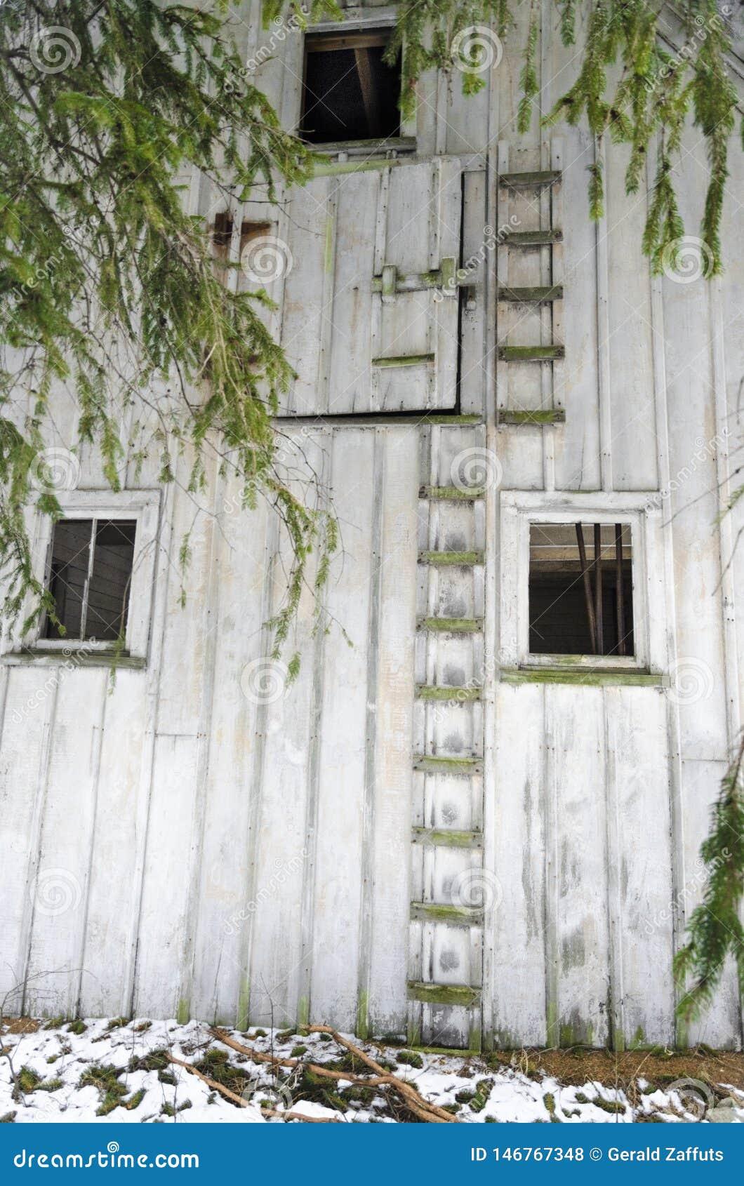 Mur extérieur abandonné de grange avec des échelles et des fenêtres