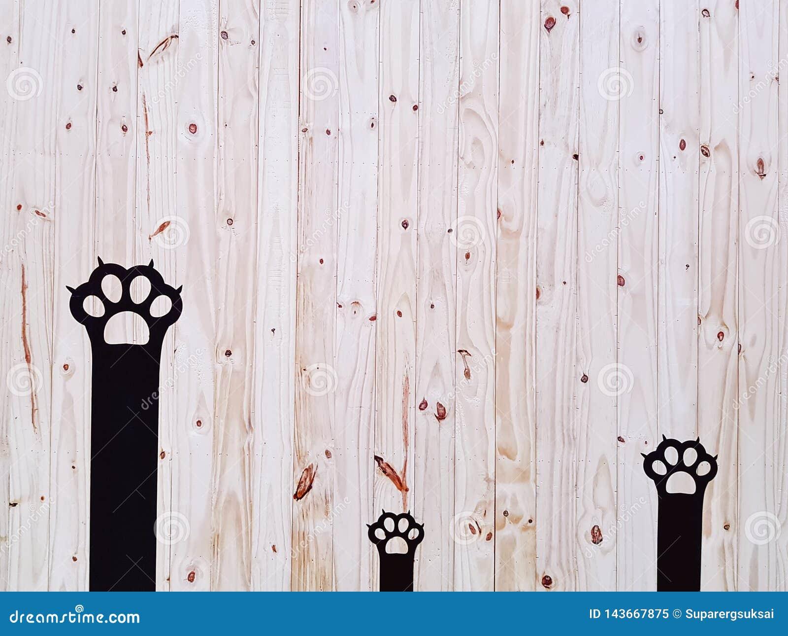Mur noir d?coratif de Cat Paws On Wooden Plank
